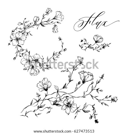 Set Of Hand Drawn Flowers Flax For Rustic Wedding Invitations Greeting Cards