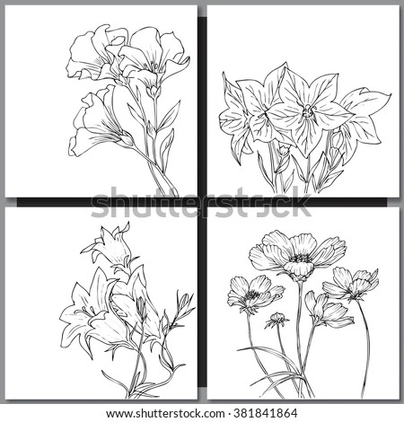 Set of hand drawn flowers sketches for coloring and greeting cards. Vector illustration - stock vector