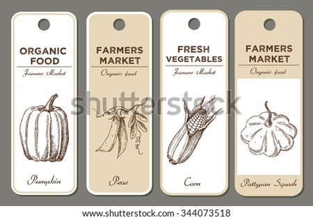 Set of hand drawn labels with vegetables. Pumpkin, peas, corn, pattypan squash. Can be used for vegan products, brochures, banner, restaurant menus, farmers market and packaging of organic food - stock vector