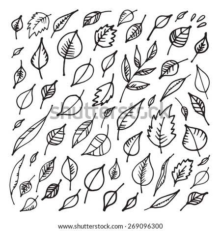 Set of hand drawn leaves. Design elements. Vector illustration. - stock vector