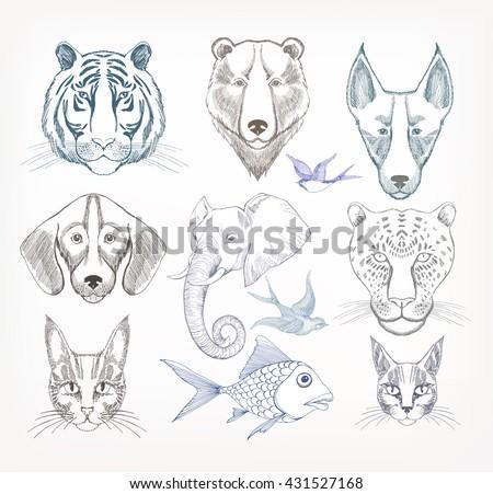 Set of Hand Drawn portrait of  animals. Dog, Bear, Tiger, Leopard, Bird, Fish, Elephant - stock vector