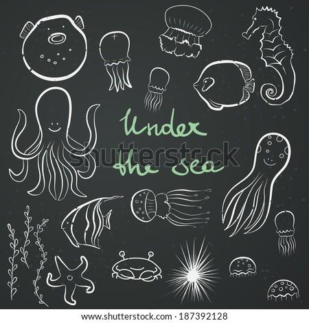 Set of hand drawn sea dwellers. Funny cartoon fish, octopus, jellyfish, starfish, seaweeds, sea hedgehog, sea horse on chalkboard background. - stock vector