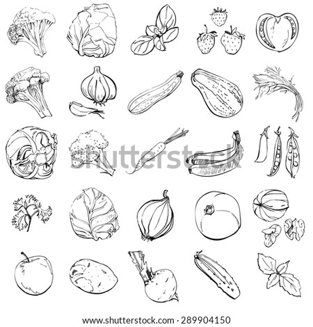Set of hand drawn sketches of fruits and vegetables on white background. - stock vector