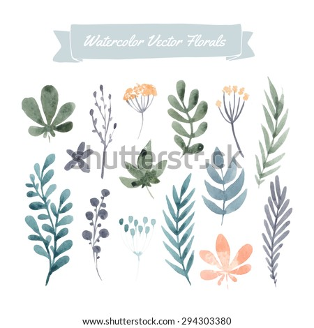 Set of hand painted pink watercolor vector flowers and leaves. Design element for summer wedding, spring congratulation card. Perfect floral elements for save the date card. - stock vector