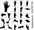 set of hand vector - stock vector