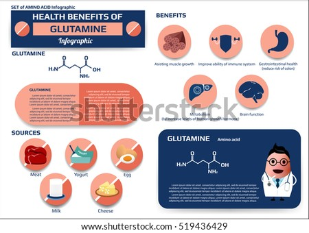 amino acid supplements benefits set health benefits glutamine amino acid stock vector 17711