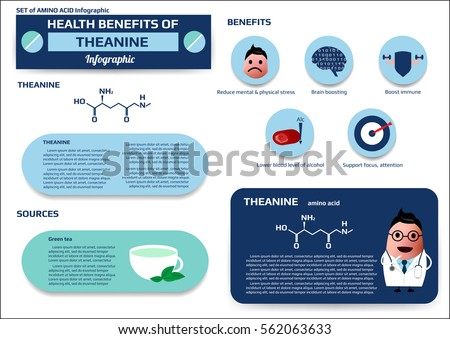 amino acid supplements benefits amino acid stock images royalty free images amp vectors 17711 | stock vector set of health benefits of theanine amino acid infographic supplement and nutrition vector 562063633