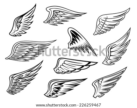 Set of heraldic vector wings in black and white with feather detail for tattoo or logo design, isolated on white