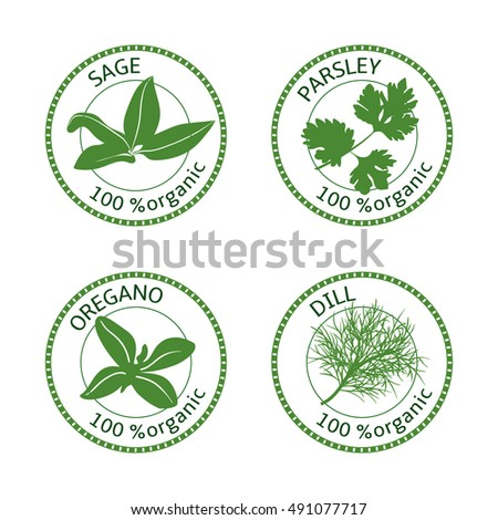 Set of herbs labels. 100 % organic. Greenery collection. Vector illustration. Parsley, oregano dill sage