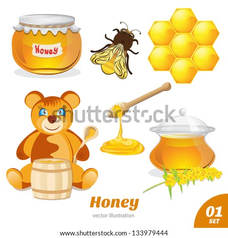 Set of honey, honeycomb, a bear, a pot of honey - stock vector