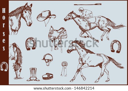 Set of horses and horse riding equipment. Hand drawn vector. Eps10. - stock vector