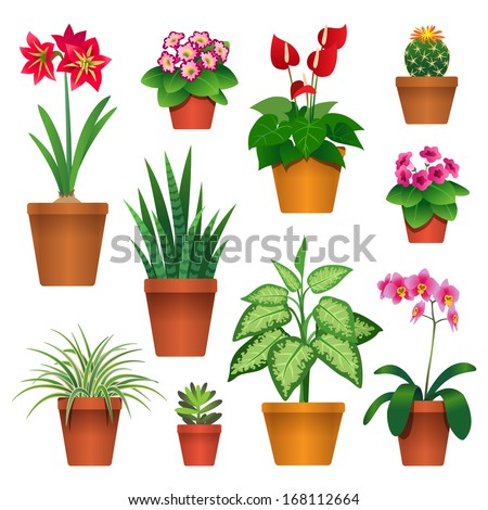 Set of houseplants in pots icons isolated on white - stock vector