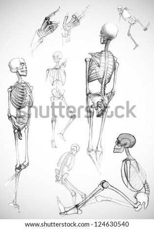 Set of human body parts and skeletons in different poses,like pictured by a pencil