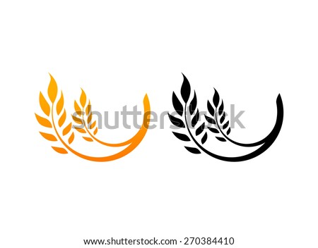 Set of Icons, Ears of Wheat, Vector Illustration, Icon of Premium Quality Farm Product in gold and black color - stock vector