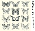 Set of illustrations illustration with butterflies. Freehand drawing - stock vector