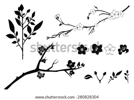 Set of illustrations of cherry branch - stock vector