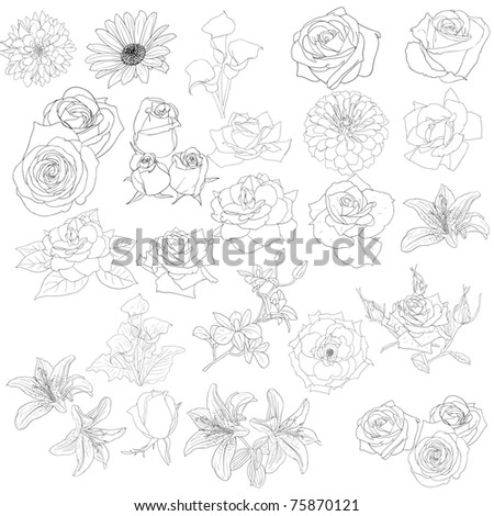 Set of  in hand drawn style roses. Vector EPS 10 illustration. - stock vector