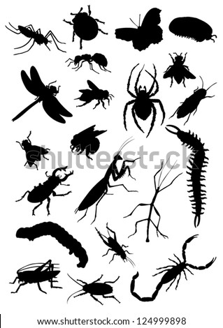 Set of insect silhouettes - stock vector