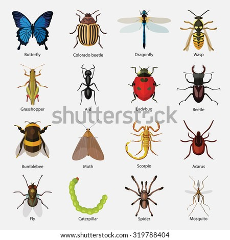 Moth Stock Images, Roy...