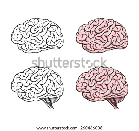 Set of isolated cartoon brains, graphical.  - stock vector