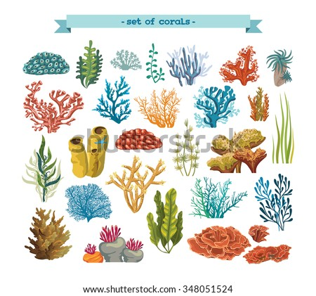 Set of isolated colorful corals and algae on a white background. Vector underwater flora and fauna. - stock vector