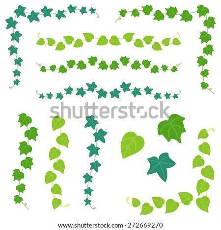 set of ivy branch / vector eps10 illustration - stock vector