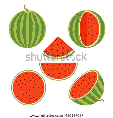 Set of juicy whole watermelons and slices in flat vector style. Watermelon illustration.