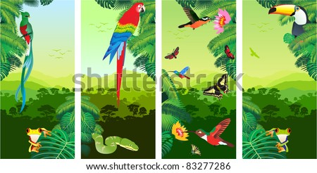 Set of Jungle Banners with Frog, Toucan, quetzal, humming-birds, butterflies , Ara and Green Snake - stock vector
