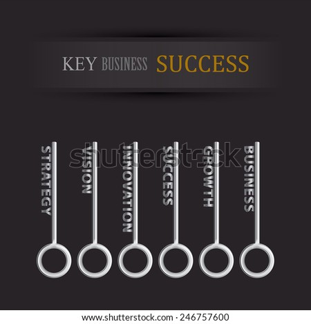 set of key for business success - stock vector