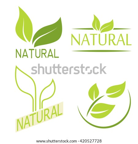 Set of labels, logos with text. Natural, eco food. Organic food badges in vector (cosmetic, food). Vector logos. Natural logos with leaves. - stock vector