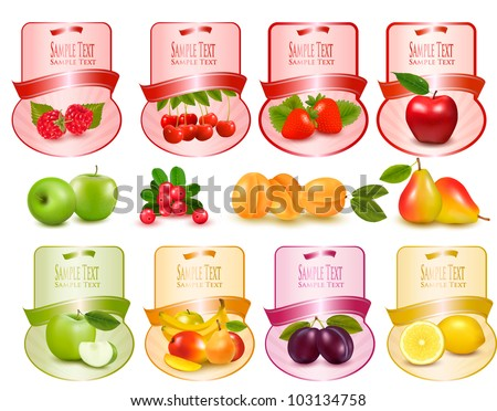 Set of labels with berries and fruit. Vector illustration. - stock vector