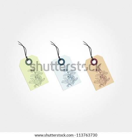 set of labels with floral motifs   element for design, background, card, labels, tags