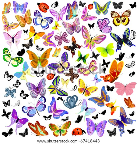 set of ladybug and butterfly - stock vector