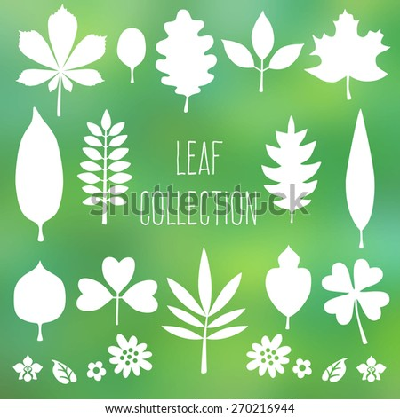 Set of  leaves silhouette. Leaf collection on blurred background. Vector illustration. - stock vector