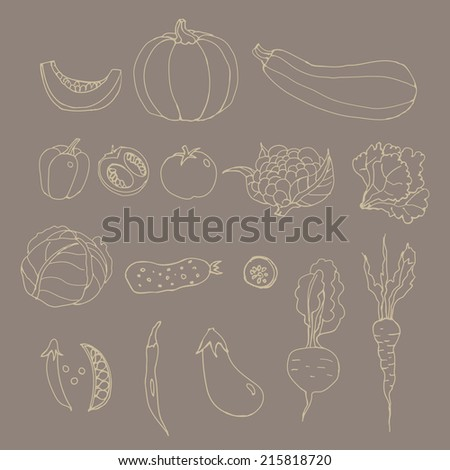 Set of line art vegetables. Cartoon. pumpkin, zucchini, peppers, hot, chili, peas, tomato, cauliflower, cabbage, lettuce, cucumber, eggplant, beets, carrots. Hand drawing
