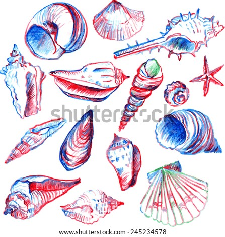 set of line drawing shells, hand drawn vector illustration - stock vector