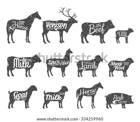 Set of livestock labels templates. Retro styled livestock silhouettes collection for groceries, meat stores, packaging and advertising. Vector label design. - stock vector
