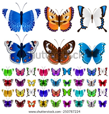 Set of many butterflies in various colors and forms