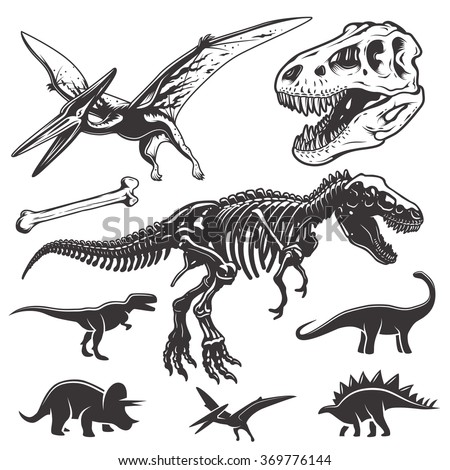 Set of monochrome dinosaurs. Archeology elements. T-rex skull and skeleton. Dinosaurs icons. - stock vector