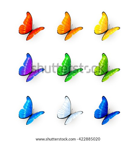 Set of multicolored butterflies, nine butterflies isolated on white background, illustration. - stock vector