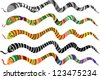 Set of Multicolored Striped Snakes, Symbols of Chinese New Year 2013, Vector Version - stock vector