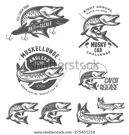Set of muskellunge musky fishing design elements - stock vector