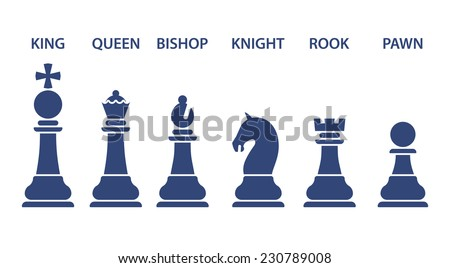 Set of named chess piece vector icons in blue silhouettes on white showing the king queen rook bishop knight and pawn - stock vector