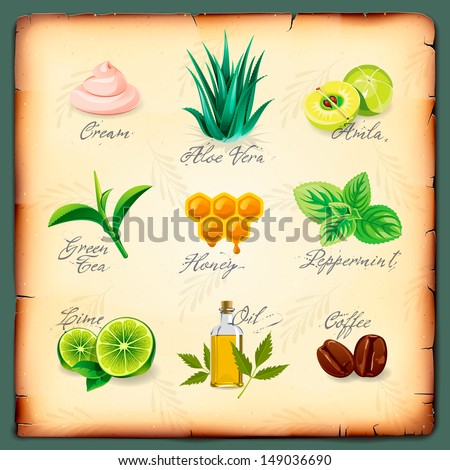 Set of natural cosmetics ingredients, vector illustration.  - stock vector