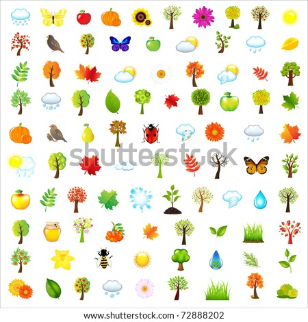 Set Of Natural Elements, Isolated On White Background, Vector Illustration
