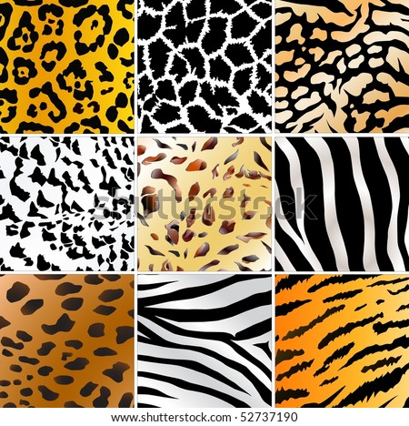 Set of nine different wild animals skin patterns - stock vector