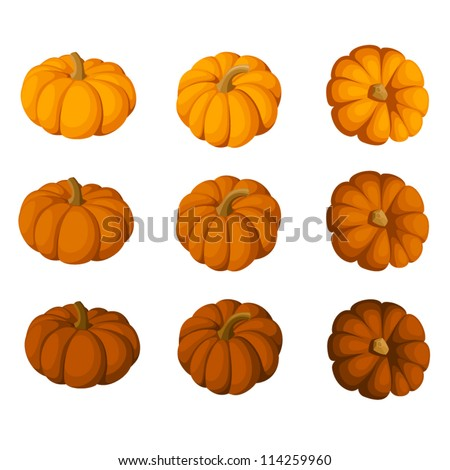 Set of nine pumpkins isolated on a white background. Vector illustration. - stock vector