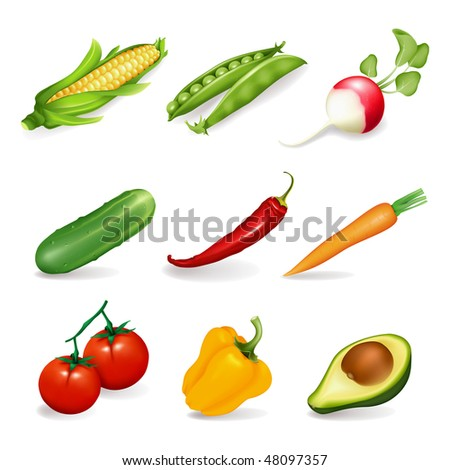 Set of object with vegetables - stock vector
