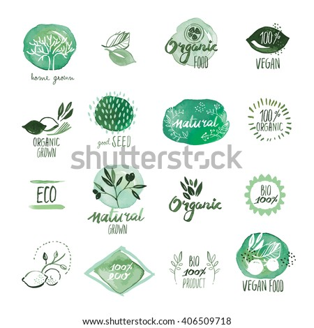 Set of organic food hand drawn watercolor stickers and badges. Vector illustrations for organic food and drink, restaurant and organic products. - stock vector