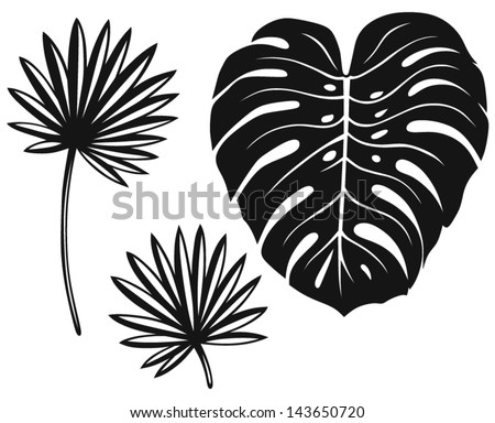 Set of palm leaves isolated on white background - stock vector